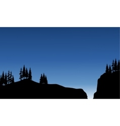 Scenery spruce in cliff of silhouette vector