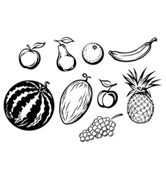 Set of fresh fruits icons vector image vector image