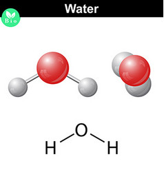 Water natural inorganic compound vector image vector image