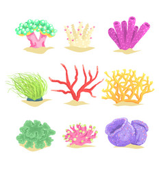 Underwater plants set seaweeds and aquatic marine vector