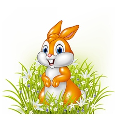 Cartoon rabbit on grass background vector