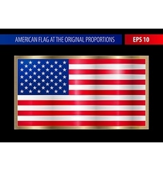 American flag in a metallic gold frame vector image vector image