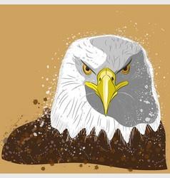 Eagles head vector