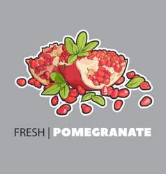 Summer fresh fruits vector