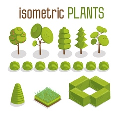 Isometric trees grass and city plants set vector