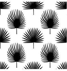 Fan palm leaves seamless pattern vector