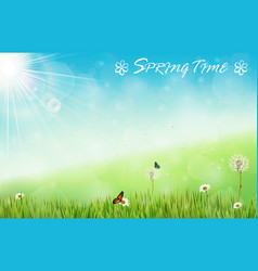 spring background with butterflies and dragonfly vector image vector image