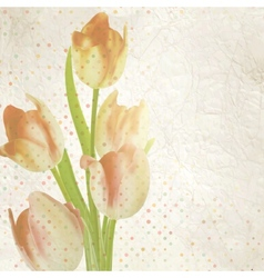 Vintage card with tulips and copyspace eps 10 vector