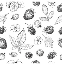 Seamless hand drawn pattern with berries vector