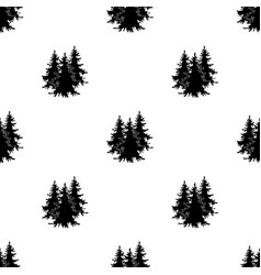 Canadian spruce canada single icon in black style vector