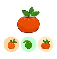 Fruit icons mandarin lime  orange vector