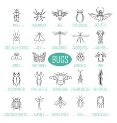 Insects icon flat style 24 pieces in set outline vector
