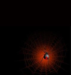 Halloween spider vector