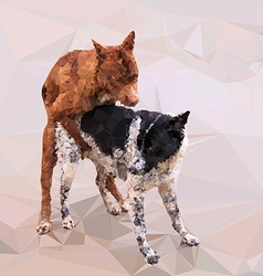 Low poly of male dog cover female dog vector image vector image