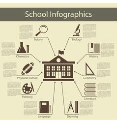 School Infographics vector image
