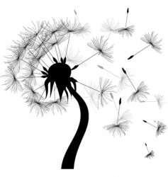 Windy dandelion vector