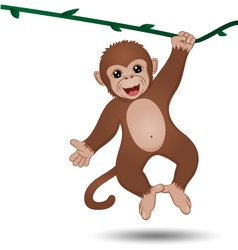 Monkey hanging on a branch vector