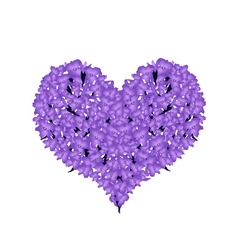 Beautiful violet lavender in a heart shape vector