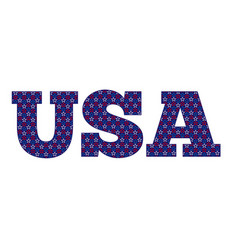 Usa outline stars vector