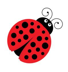 cute cartoon ladybug vector image vector image