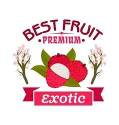 Lychee fruit with blooming lichee trees emblem vector