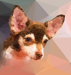 Low poly geometric portrait of chihuahu dog vector