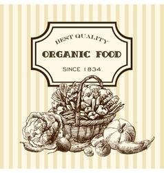 eco farm sketch vector image vector image