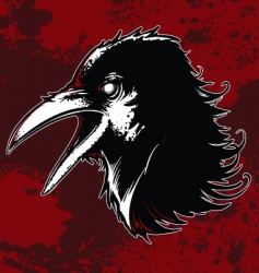 evil crow vector image