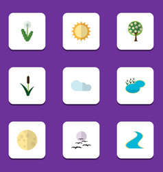 Flat icon natural set of tree cattail solar and vector