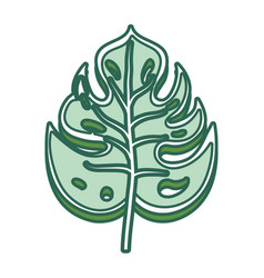Philodendron leaf vector