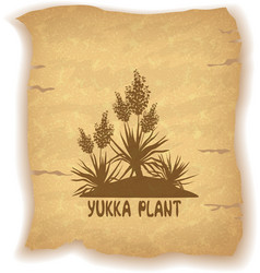Plant yucca silhouettes on old paper vector