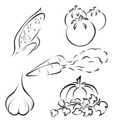 Set of vegetables logos vector
