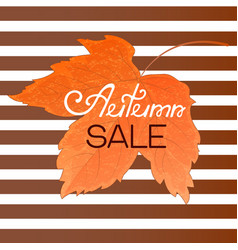 orange maple leaf autumn sale banner on a striped vector image