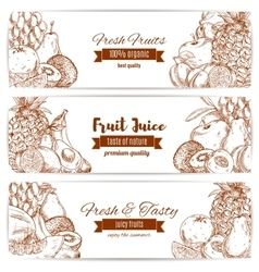 Organic natural fruit food sketch banner vector