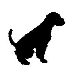 Welsh Terrier vector image