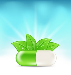 Natural medical pill with green leaves vector