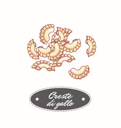 Hand drawn pasta creste di gallo isolated on white vector