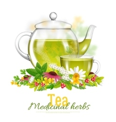 Teapot and tea cup medicinal herbs vector