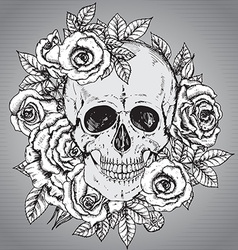 with hand drawn human skull with rose flower vector image vector image