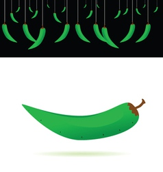 Green chillies vector