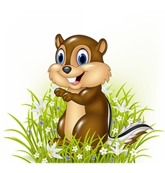 Cartoon chipmunks on grass background vector image