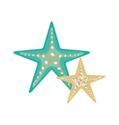 Blue and white sea stars vector