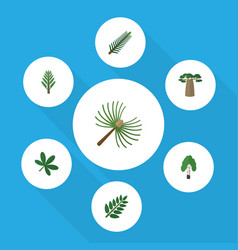 Flat icon natural set of baobab rosemary maple vector