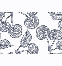 seamless botanical pattern with cherry branches vector image vector image