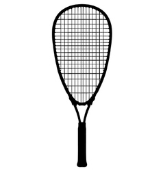 Squash racquet vector image vector image