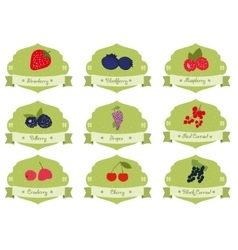 Vintage collection berries sticker vector