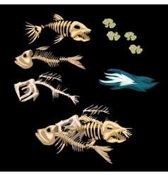 Skeletons fish track and other items vector image