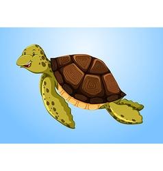 Turtle swimming in ocean vector
