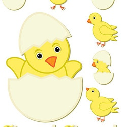 Happy easter bird vector
