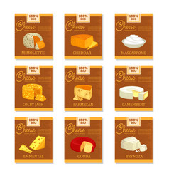 cheese banners food and vegetarian nutrition vector image vector image